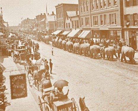 Circus parade on Main Street, about 1900.  Taken from north of Temple St. looking south.