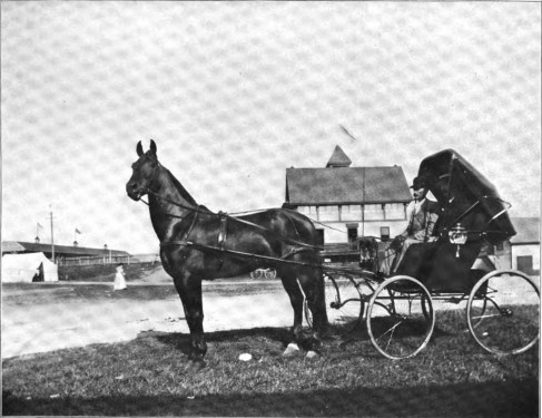 """In 1907 """"Nelson Day"""" was held at the fairgrounds.  Nelson was a very popular race horse."""