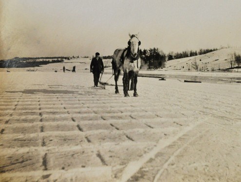 Marking and cutting Ice, approx. 1870-1875.