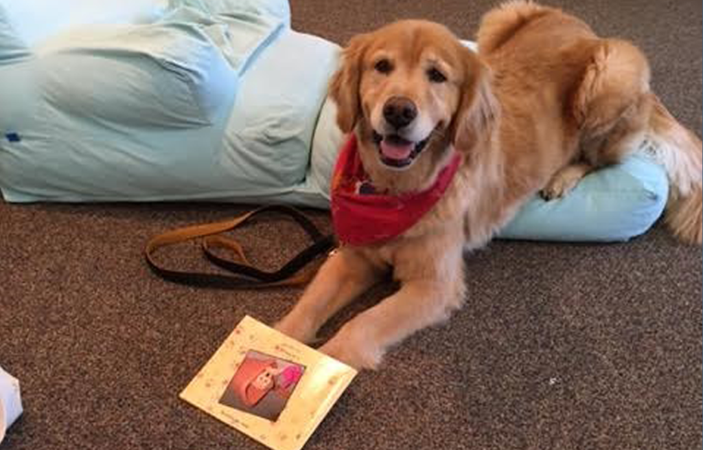 Reader Dogs @ the Library